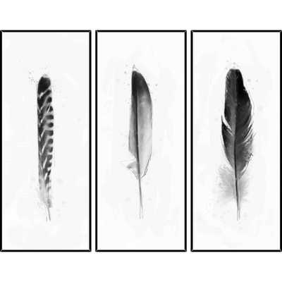 3 Piece Feathers Framed Graphic Art Set - 40.5x16.5 - Framed - AllModern