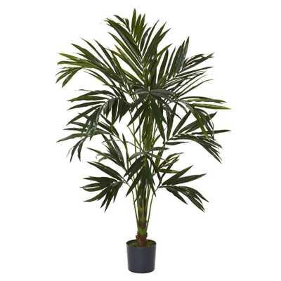 6 ft. Green Kentia Silk Tree - Home Depot