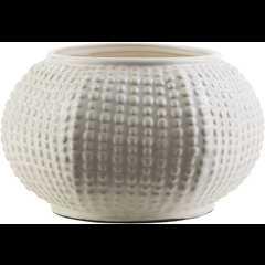 Clearwater Vase - Neva Home