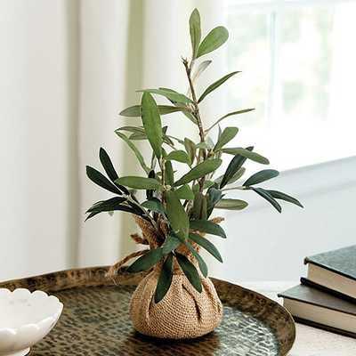 Olive Branches in Burlap - Ballard Designs