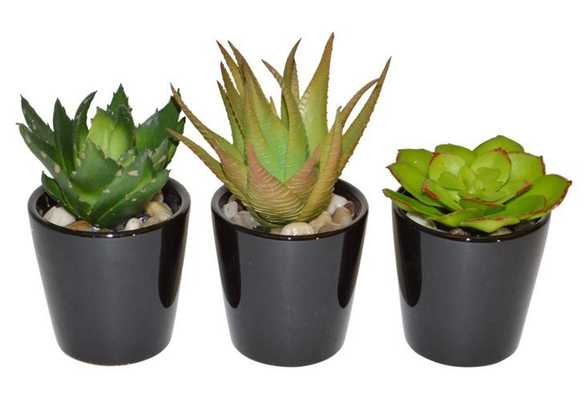 "S/3 10"" Succulents in Planter, Faux - One Kings Lane"