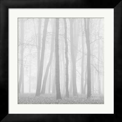 MORNING MISTS II - 30x30 - TRIBECA frame - art.com