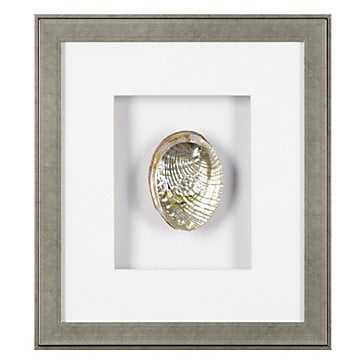 Green Abalone - 15.5x17.5 - Framed - Z Gallerie