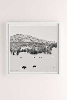 """Michael O'Neal American Bison Art Print - 20'' x 20"""" -White Wood Frame - Urban Outfitters"""
