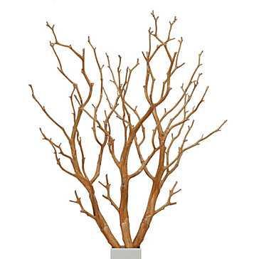 Branch - Set of 3 - Z Gallerie