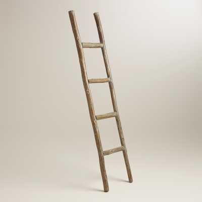 Wood Ladder Decor - World Market/Cost Plus