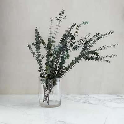 Eucalyptus Bundle - Baby - West Elm