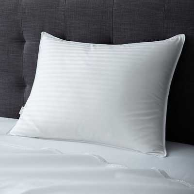 Classic Pillow Insert - Down - Standard - West Elm