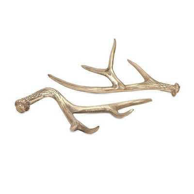 Hodge Deer Antlers - Ast 2 - Mercer Collection