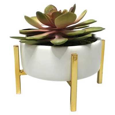 Artificial Succulent - Tall - Target
