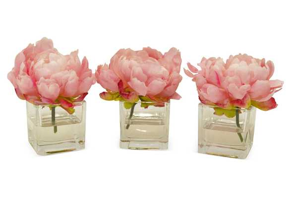 "S/3 6"" Peonies in Cubes, Handcrafted, Faux - One Kings Lane"