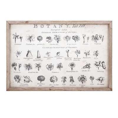 Botanical Wall Decor - Mercer Collection