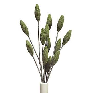 Bud Branch - Set of 3 - Z Gallerie