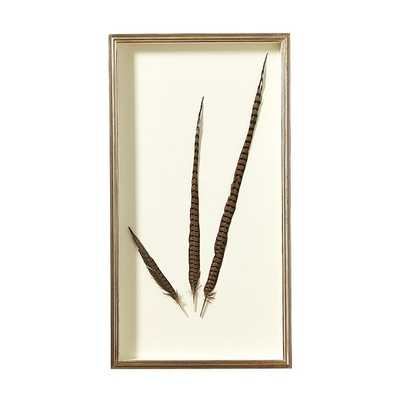Pheasant Feather Shadowbox - Left - Ballard Designs