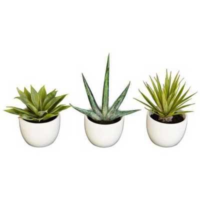 Southwest Mixed Succulent Faux Plants in Pots Set of 3 - Lamps Plus