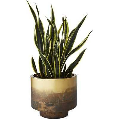 Sahara Brass Planter - CB2