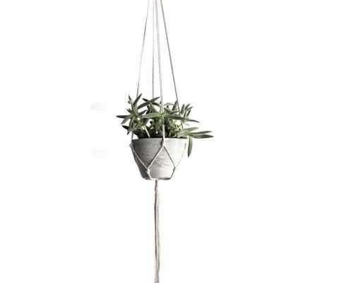 Modern Concrete Hanging Planter - Domino