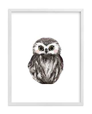 Baby animal owl - Framed no Mat - Minted
