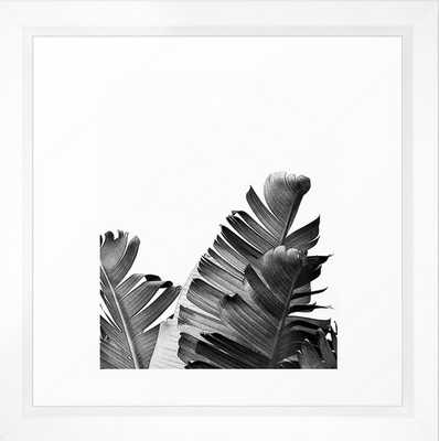 Tropical Voyage II - Vector White - 12 x 12 - Society6