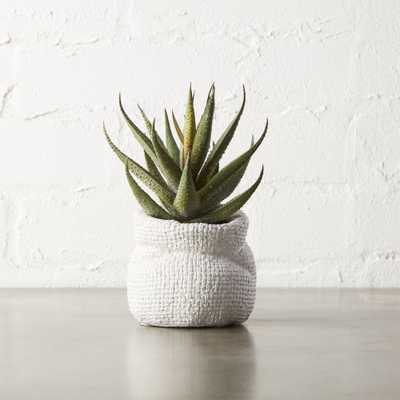 "potted faux 6"" aloe plant - CB2"