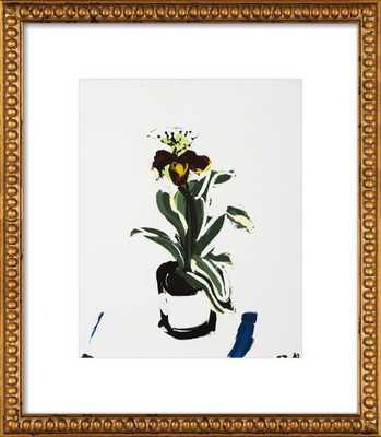 "An Orchid -  14"" x 17"" - Artfully Walls"