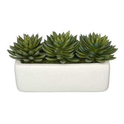 Artificial Pointed Desktop Echeveria Plant in Decorative Vase - Wayfair