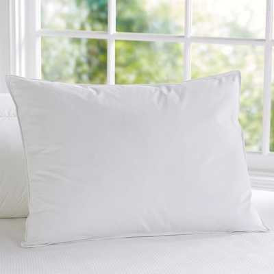 Spiraloft Standard Pillow Insert - Pottery Barn Teen