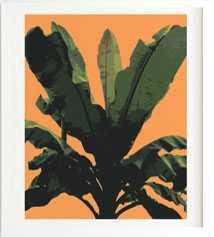 BANANARAMA ORANGE - Wander Print Co.
