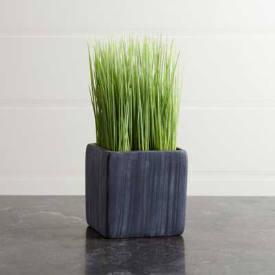 Mini Potted Grass - Crate and Barrel