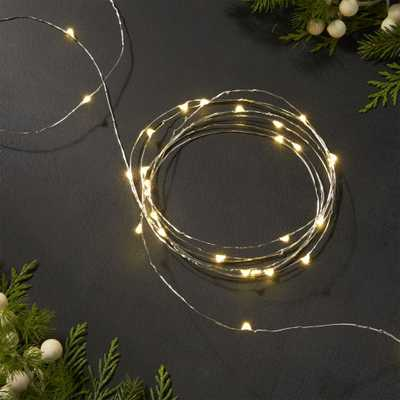 Twinkle Silver 30' String Lights - Crate and Barrel