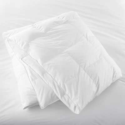 Classic Down King Duvet Insert - Crate and Barrel