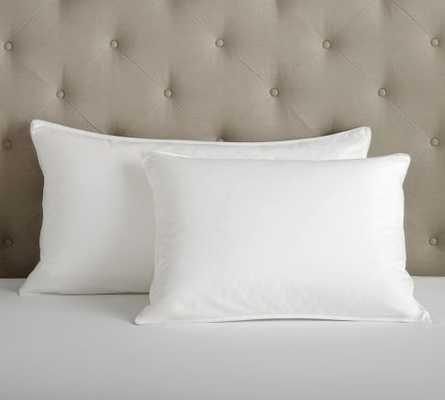 PB Organic Cotton 350-Thread-Count Sateen -  Standard Pillow Insert - Pottery Barn