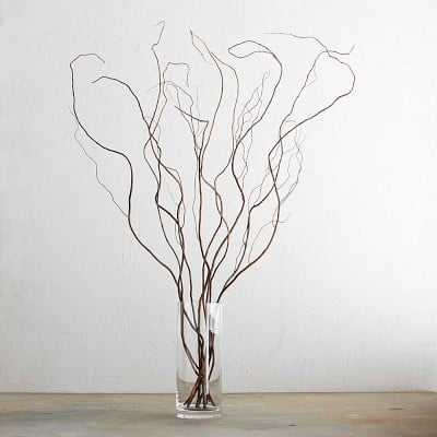 Curly Willow Branches - Williams Sonoma