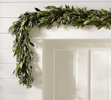 Live Olive Leaf & Myrtle Garland - Pottery Barn