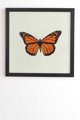 THE QUEEN BUTTERFLY 12x12 Black Frame - Wander Print Co.