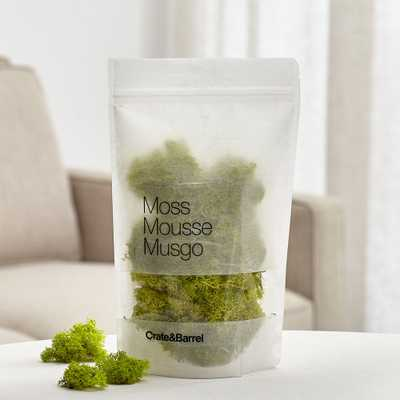 Chartreuse Bag of Moss - Crate and Barrel