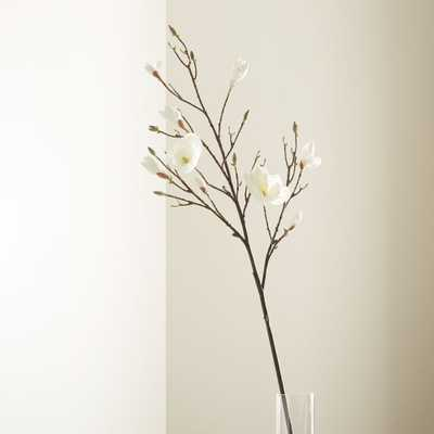 Magnolia Flower Branch - Crate and Barrel
