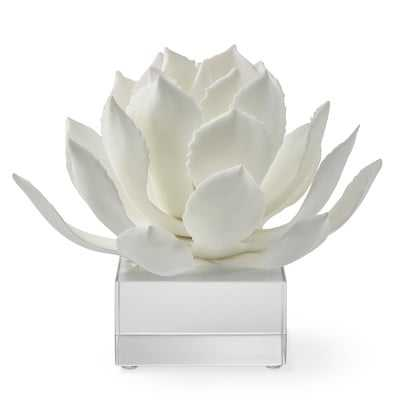 White Agave On Acrylic Stand, Large - Williams Sonoma