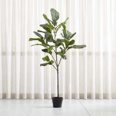 Faux 7' Fiddle Leaf Fig Tree - Crate and Barrel