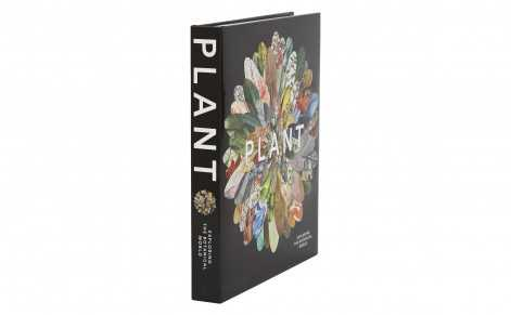 PLANT: EXPLORING THE BOTANICAL WORLD - Jayson Home