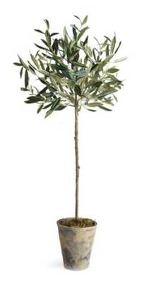 "30"" Olive Tree In Planter, Faux - One Kings Lane"