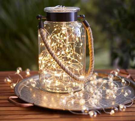 MINI LED STRING LIGHTS - Pottery Barn