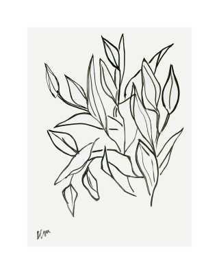 Lilies - No Frame - Artfully Walls