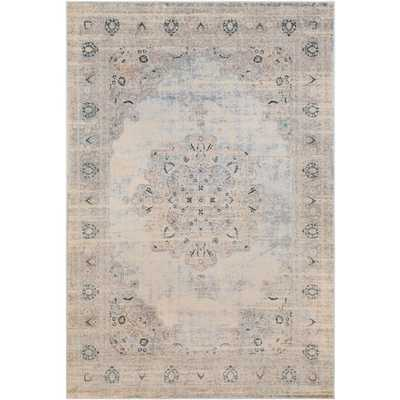"Asia Minor Area Rug ASM-2307 - 6'7"" x 9'6"" - Neva Home"
