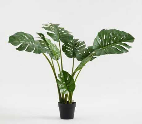 Faux Monstera Plant - World Market/Cost Plus