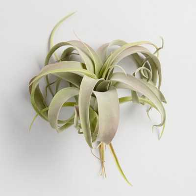 Large Faux Air Plant Pick by World Market Set of 2 - World Market/Cost Plus