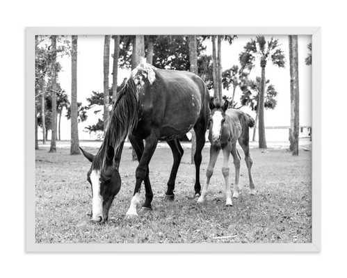 Cumberland Island Horse Love - Minted