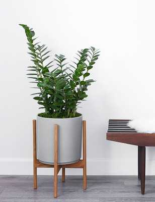 """LBE Design Ceramic Planter, Gray 10""""Dia x 11""""H - without stand - Lulu and Georgia"""