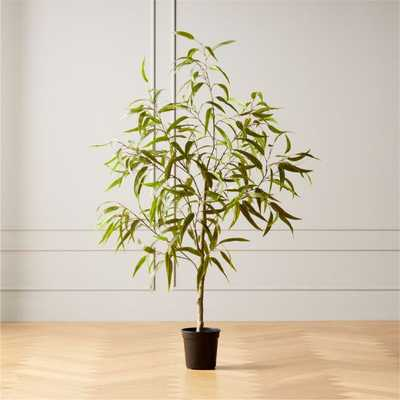 Faux Potted Eucalyptus Tree 5' - CB2