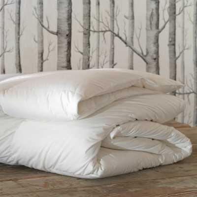 Eastern Accents Loure Summer Down Alternative Comforter Size: California King - Perigold